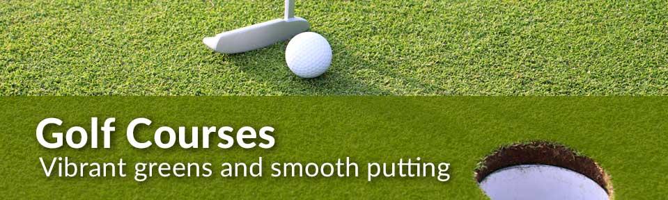 image-slider-golf