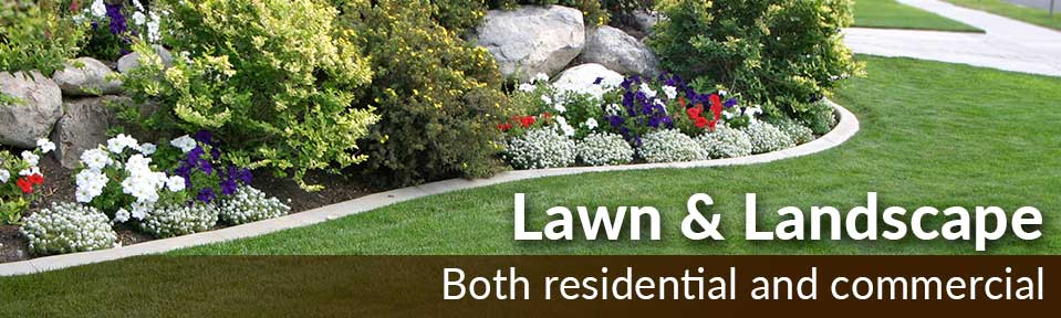 Home Images Lawn 09 30 15