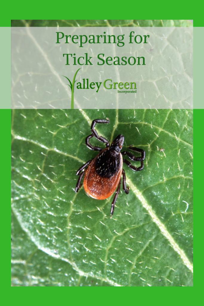 Preparing for tick season