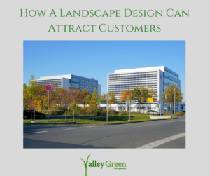 How a landscape design can attract customers