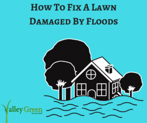 How To Fix A Lawn Damaged By Floods