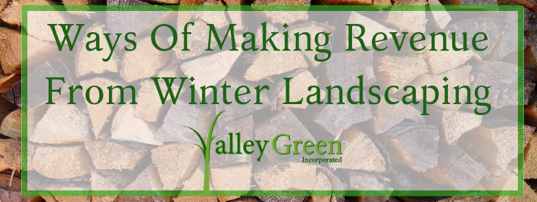 Ways Of Making Revenue From Winter Landscaping