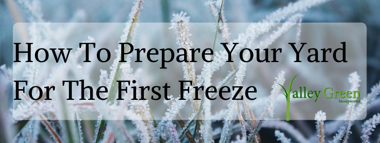 How To Prepare Your Yard For The First Freeze