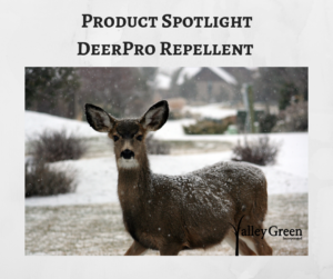 Product Spotlight DeerPro Repellent