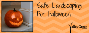 Safe Landscaping For Halloween