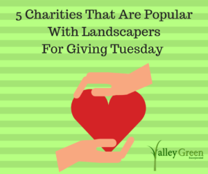 5 Charities That Are Popular With Landscapers For Giving Tuesday