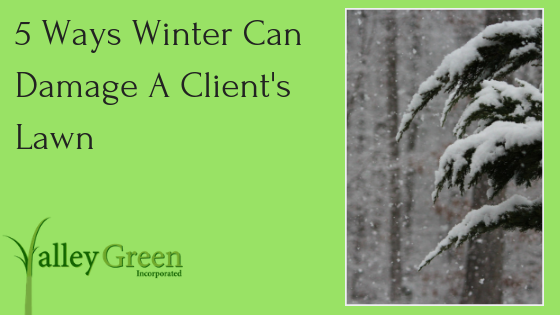 5 Ways Winter Can Damage A Client's Lawn