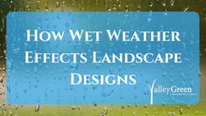 How Wet Weather Effects Landscape Designs