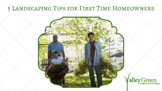 5 Landscaping Tips for First Time Homeowners