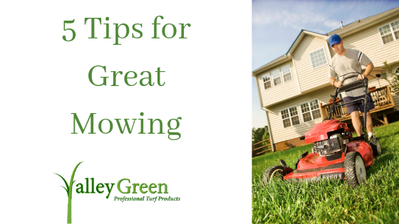tips for great mowing