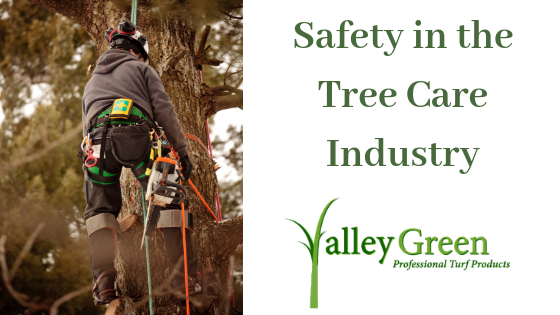 Safety in the Tree Care Industry