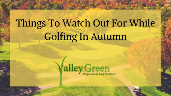 Things To Watch Out For While Golfing In Autumn