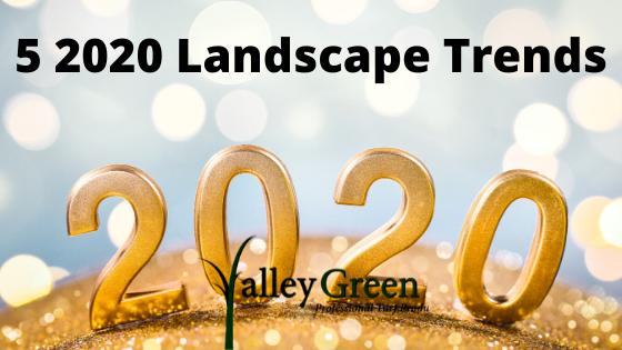5 2020 Landscape Trends