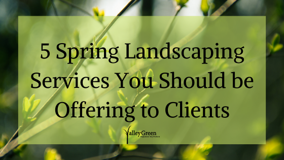 5 spring landscaping services you be offering to clients.