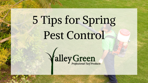 5 Tips for Spring Pest Control