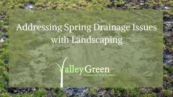 Addressing Spring Drainage Issues with Landscaping