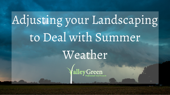 adjusting your landscaping to deal with summer weather