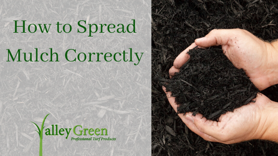 How to Spread Mulch Correctly