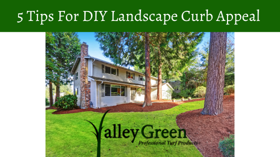 DIY Landscape Curb Appeal
