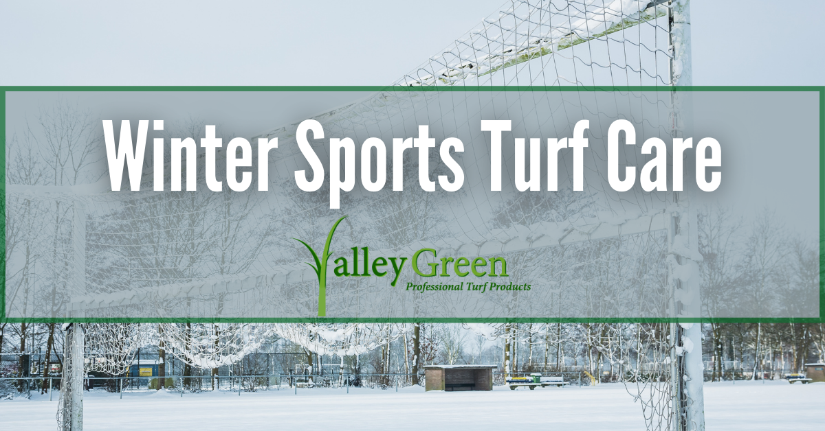 winter sports turf care