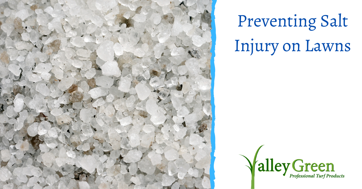 Preventing Salt Injury on Lawns