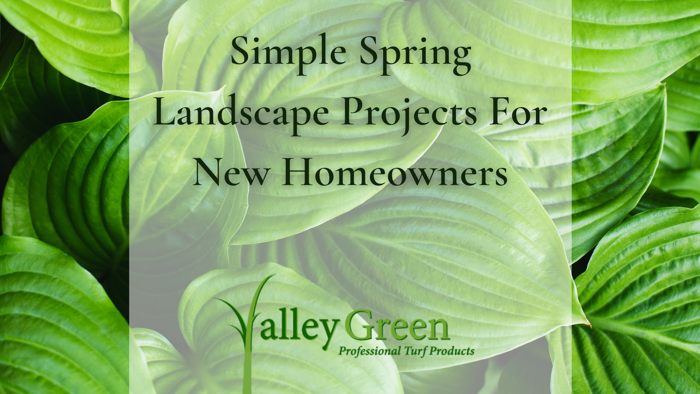 Spring Landscape Projects For New Homeowners