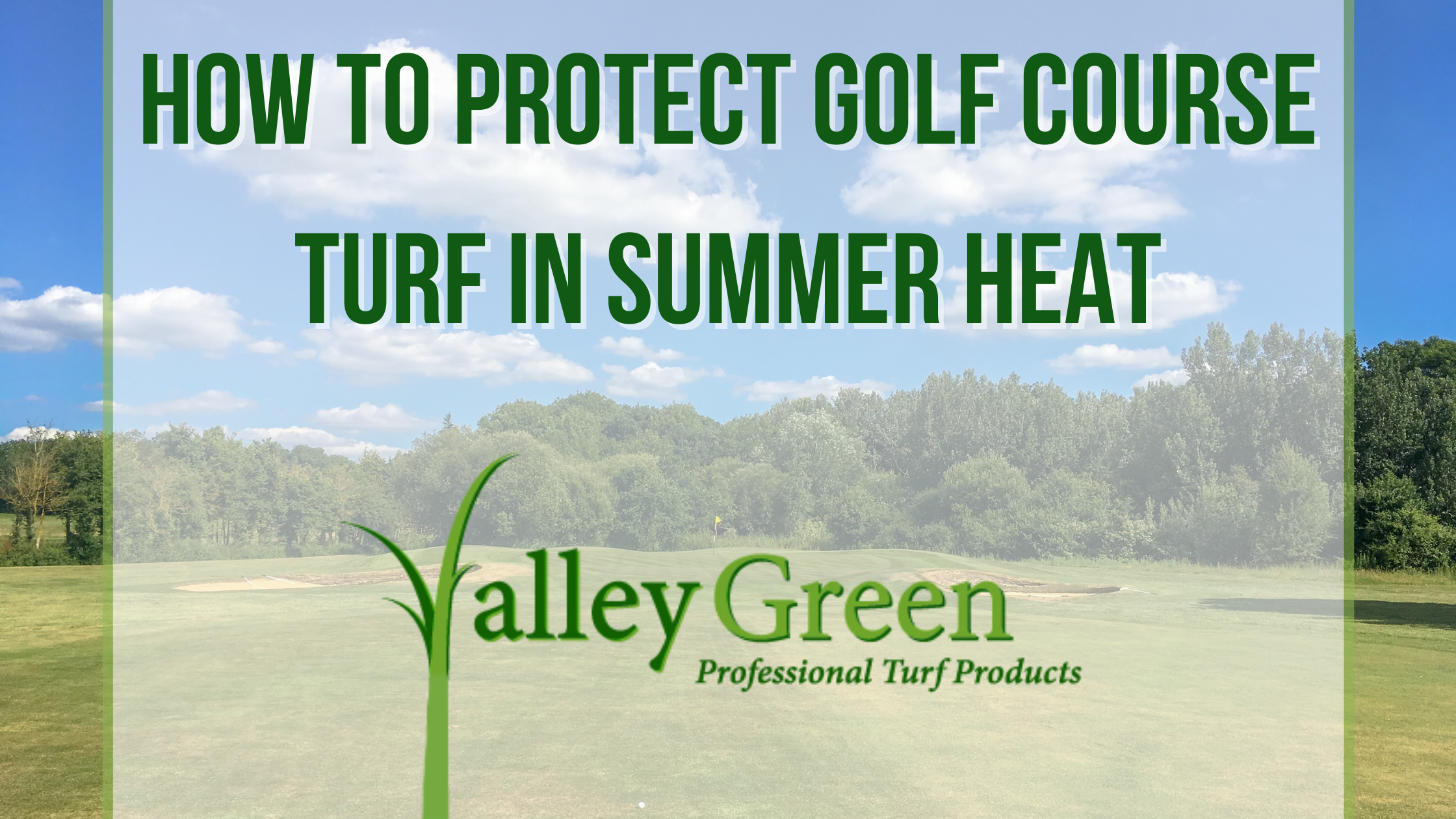 How to Protect Golf Course Turf in Summer Heat