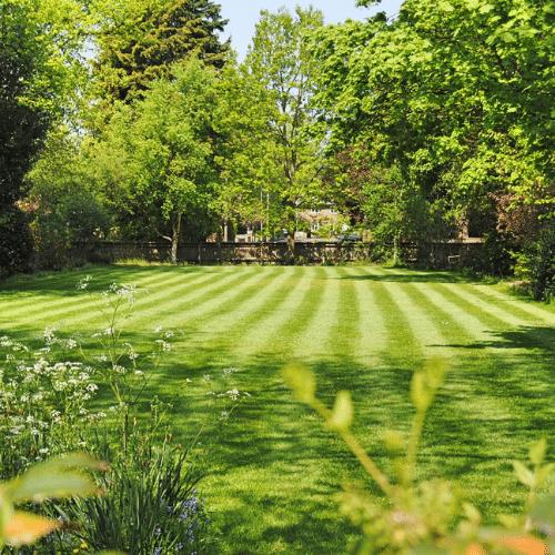 Lawn & Landscape
