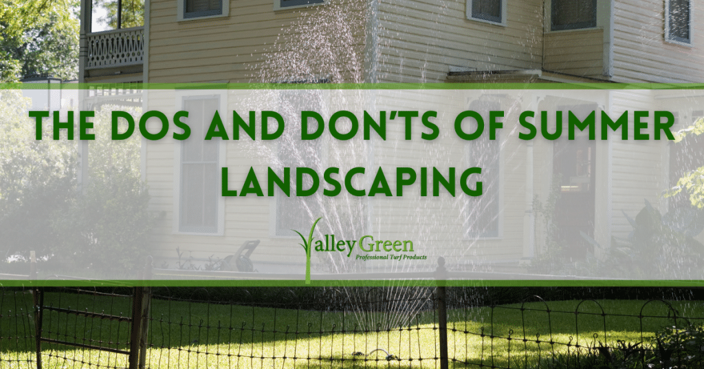 The Dos and Don'ts of Summer Landscaping