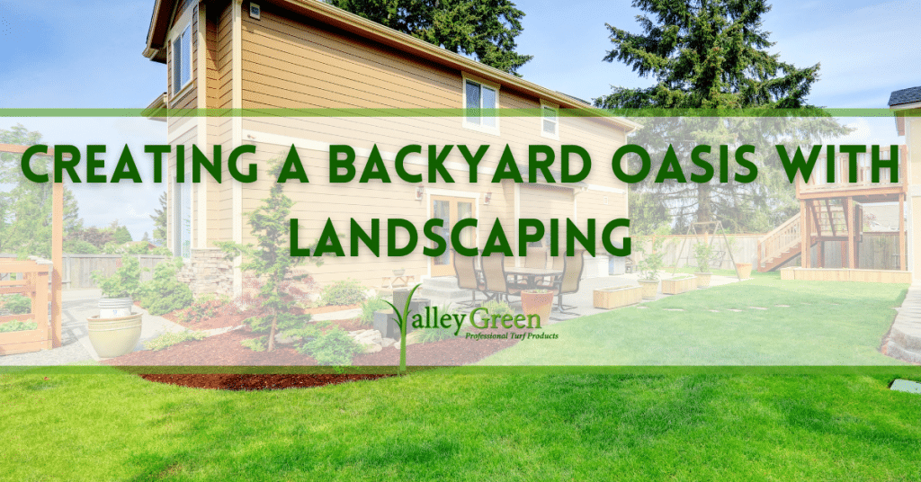 Creating a Backyard Oasis with Landscaping
